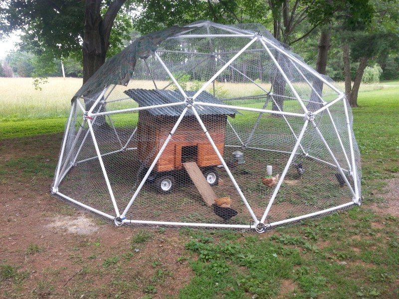 Geodesic greenhouse pvc mary haynes customer reviews for Inground pool greenhouse